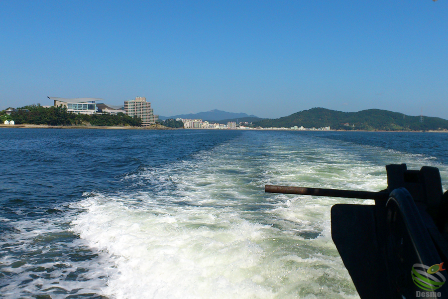 韓国旅行記&グルメレポ