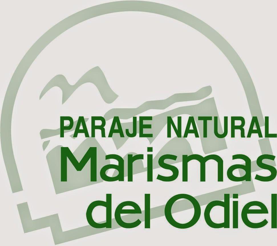 Paraje Natural Marismas del Odiel