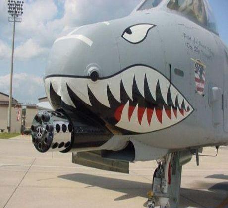 Shark Bomber Plane