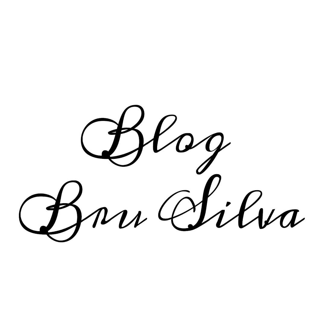 Blog Bru Silva