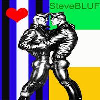 Steve BLUF's blog