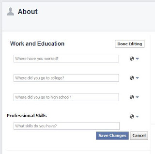 Professional Skills option in Facebook profile