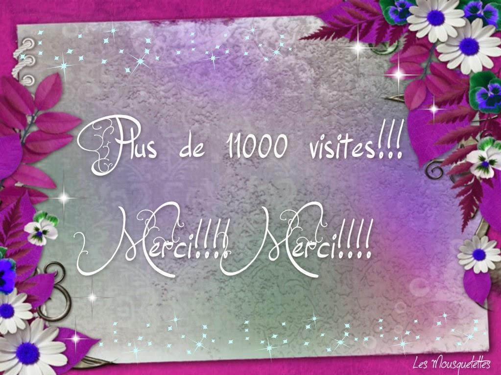 11000 visites Blog des Mousquetettes Merci!!