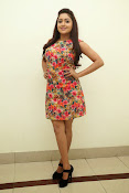 Anjana deshpande sizzling photos-thumbnail-15