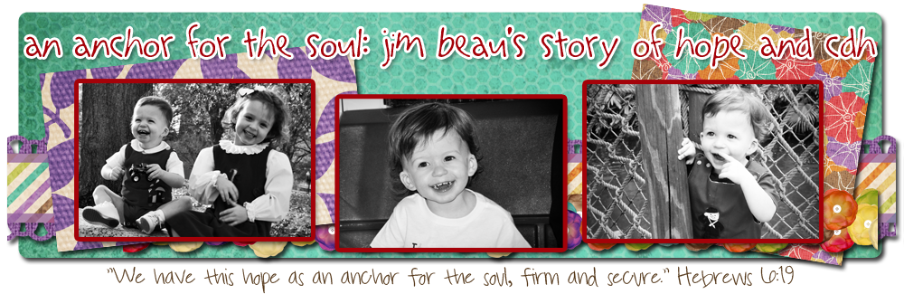 An Anchor for the Soul: Jim Beau's Story of Hope & CDH
