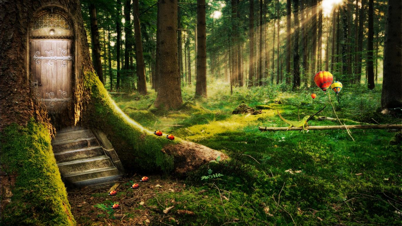 http://3.bp.blogspot.com/-s_2VTnVzg44/ULRnR6DIznI/AAAAAAAANkI/AL3B9m4aiw0/s1600/Enchanted+Forest+-+Wallpaper+HD.jpg
