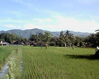Perbukitan Kulon Progo Yogyakarta