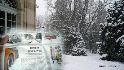Sächsische Zeitung 25.02.2013