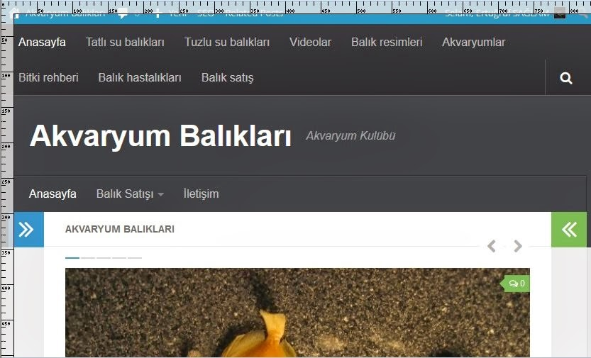 Chrome ve Firefox Cetvel Eklentisi