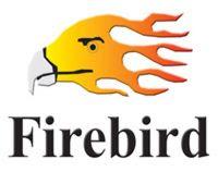 Logo dụng cụ khí nén firebird