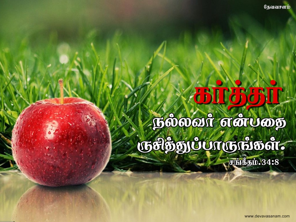 tamil bible words wallpapers - photo #15
