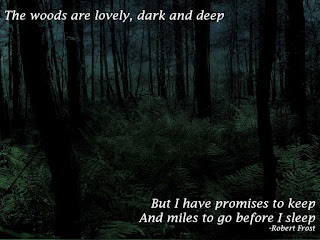The woods are lovely, dark and deep but I have promises to keep and miles to go before I sleep