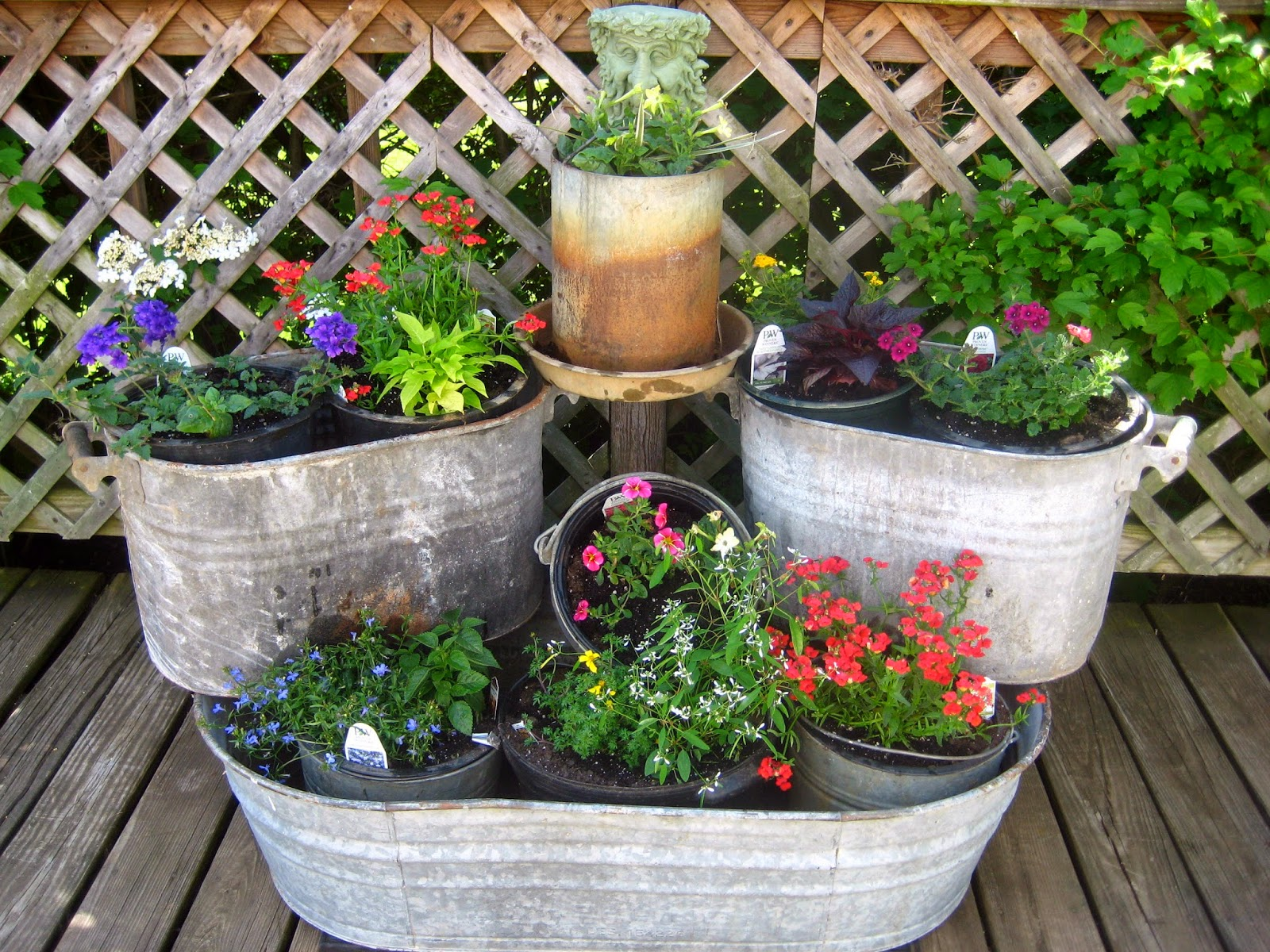 Meadow muffin gardens container planting ideas for Garden arrangement of plants