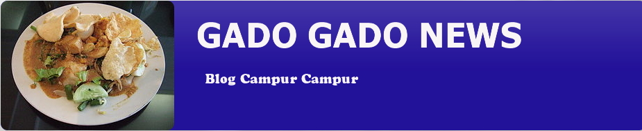 Gado  Gado News