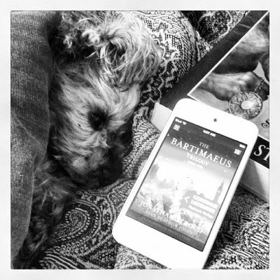 A black and white photo of Murchie tucked beneath a tapestry comforter, one ear askew so it rests atop his head. Beside him sits a white iPod touch with the indistinct cover art for The Amulet of Samarkand displayed on its screen. The iPod is propped against a paperback copy of the book with only one corner visible. The illustration depicts an amulet clutched in an otherworldly hand.