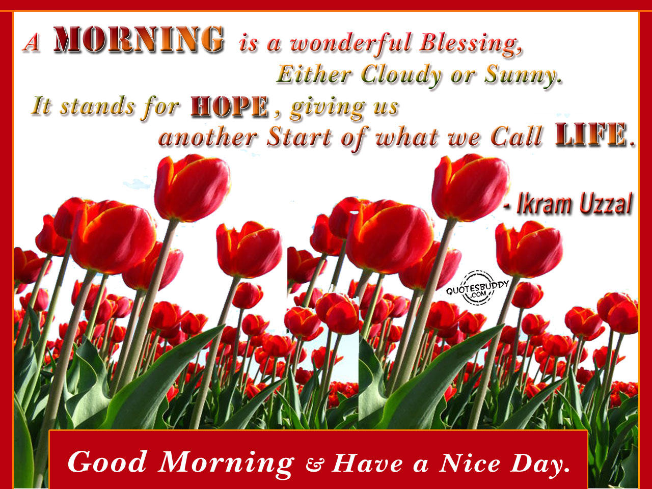Happy Tuesday Morning Quotes Good morning sgx nifty trading