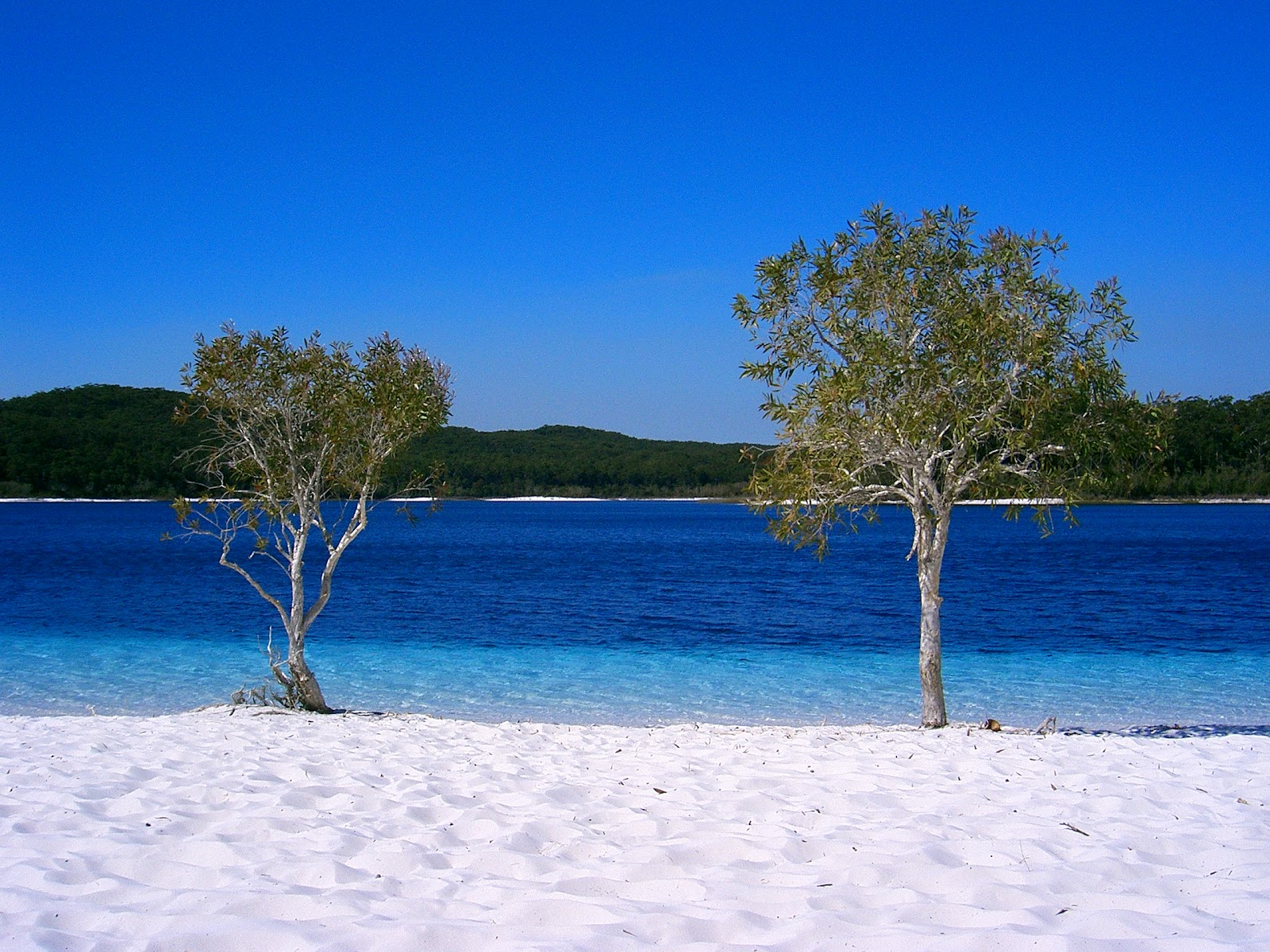 Top 10 beaches in the world wonderful for Top 1 beach in the world