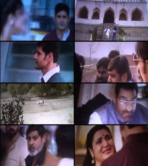 Srimanthudu 2015 Telugu DVDScr 350MB