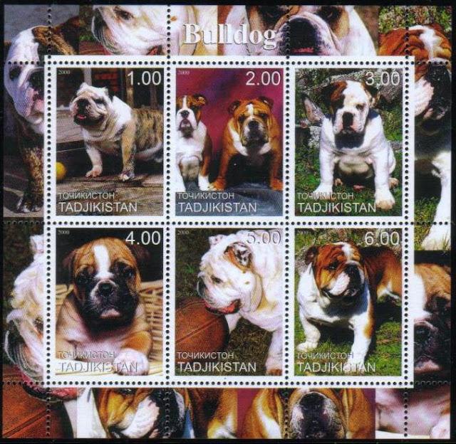 2000年タジキスタン共和国 ブルドッグの切手シート