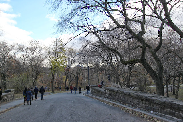 An afternoon walk at Central Park in New York, USA