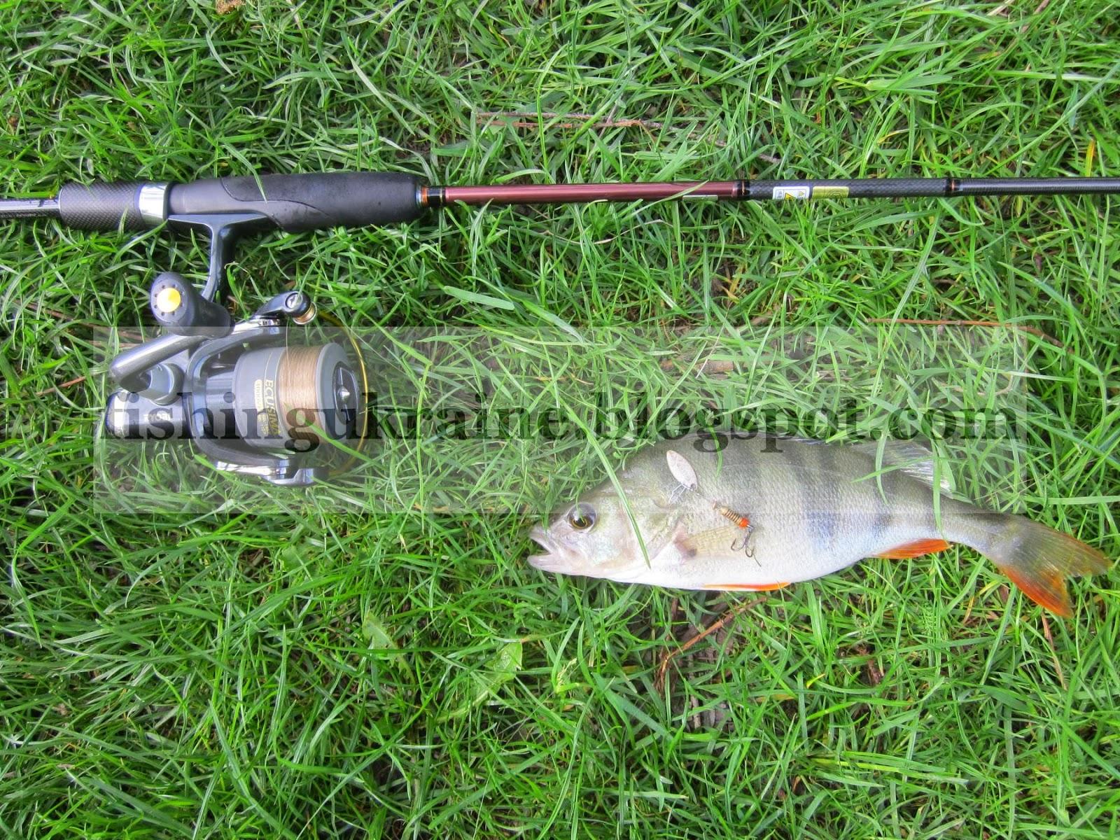 где клюет рыба в ивановской области