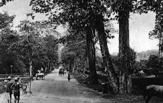 jalan orchard, singapore, singapura, tempat wisata, belanja,