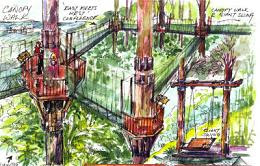 Access to forest: An artist's impression of the canopy walk which will be constructed in a zigzag fashion.
