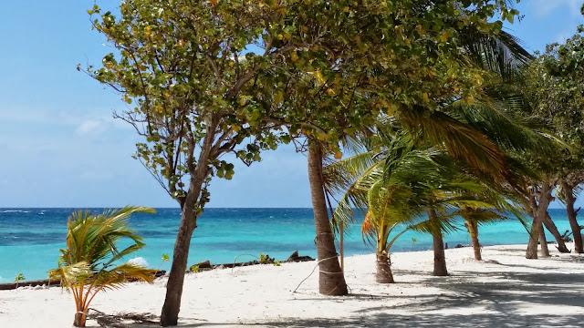Destaca la viveza de los colores de Las Maldivas