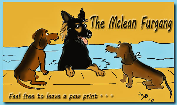The Mclean Furgang