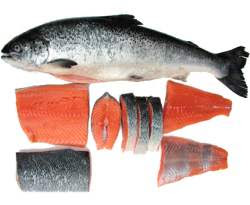 Permalink to The Healthy Benefits Of Consuming Salmon Fish