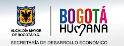 Secretaría Desarrollo Económico