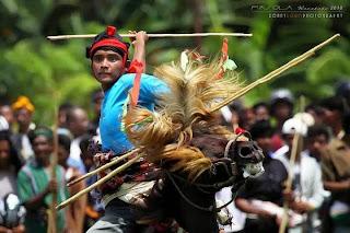 Festival Berdarah Pasola Sumba, Kisah Janda cantik Rabu Kaba