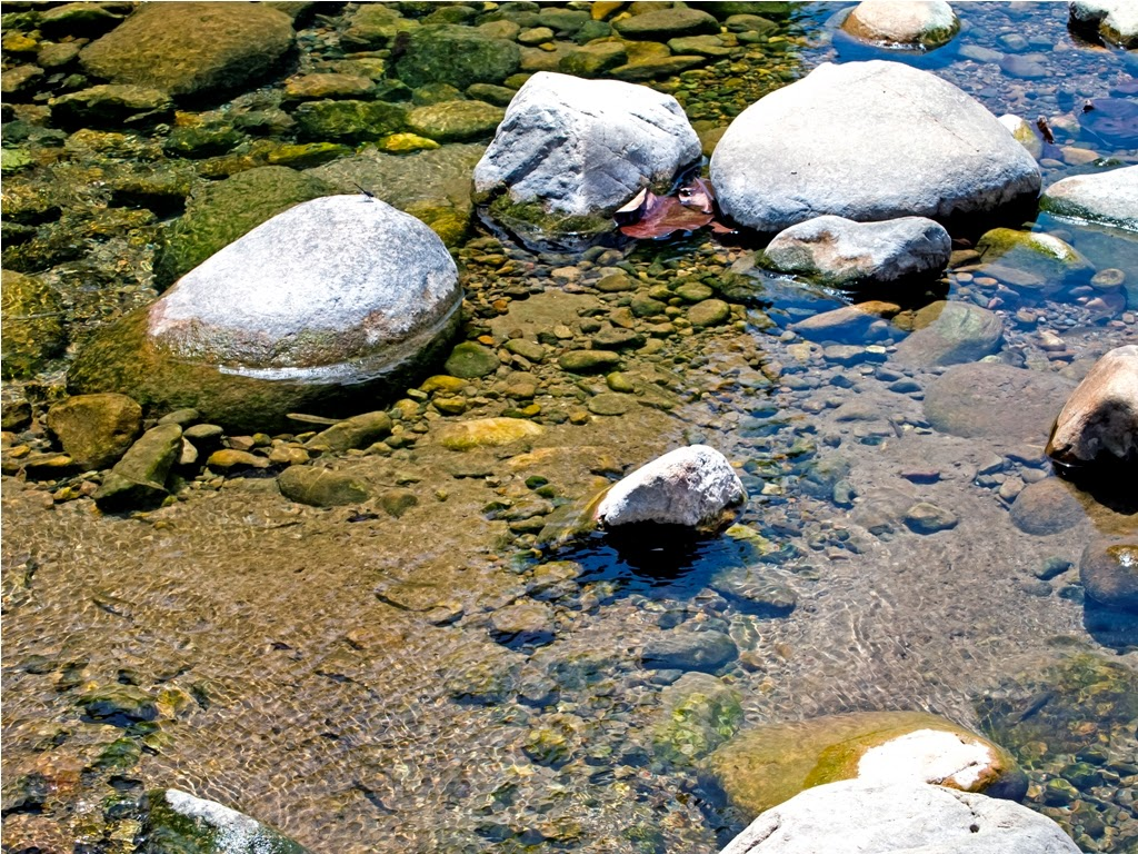 The Ramganga River with Rocks