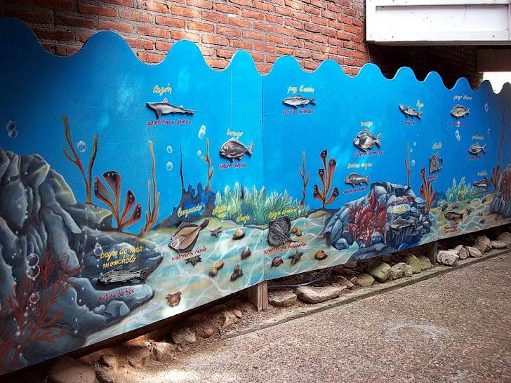 mural acceso acuario