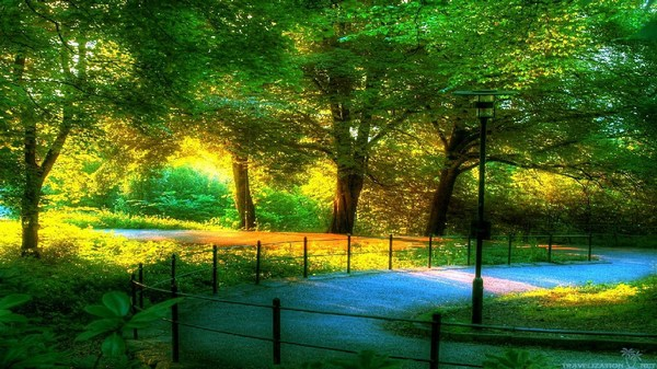 Beautiful Scenic Wallpaper Full HD Download