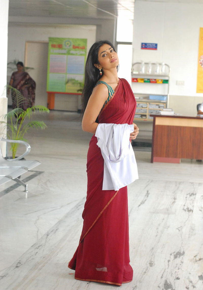 Actress Shriya Saran Saree Photos