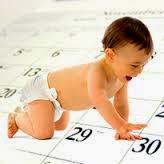 Primrose Hill Baby Calendar