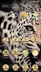 Screenshots of the Crazy Leopard for Android tablet, phone.