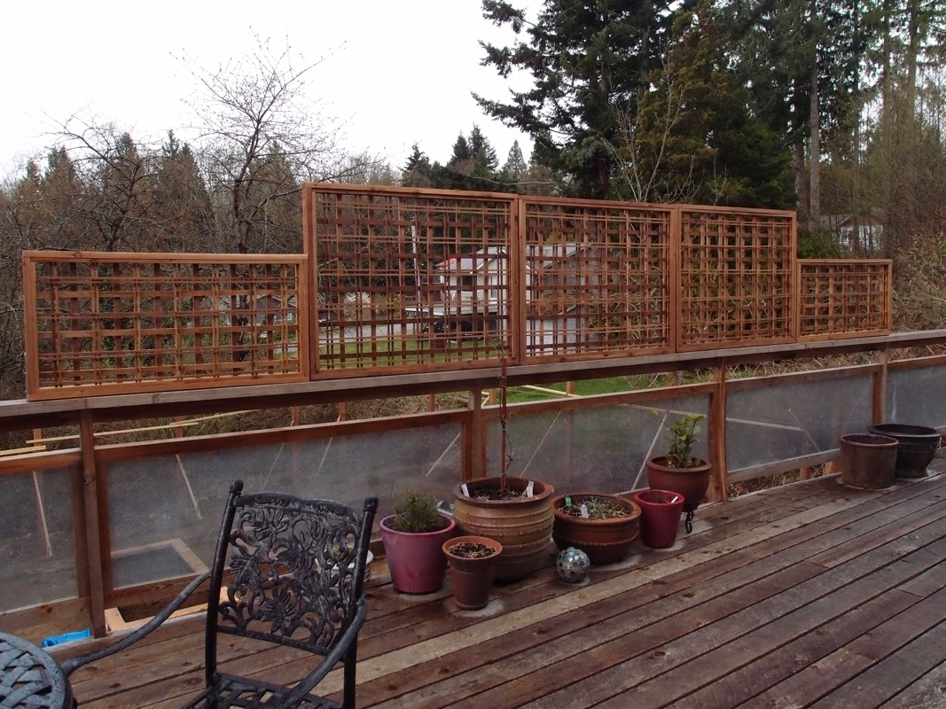 Red cedar privacy trellis, modern design