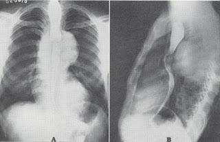 NEJM: Historical Medical Image Challenge