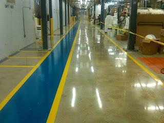 polished concrete, coated floors