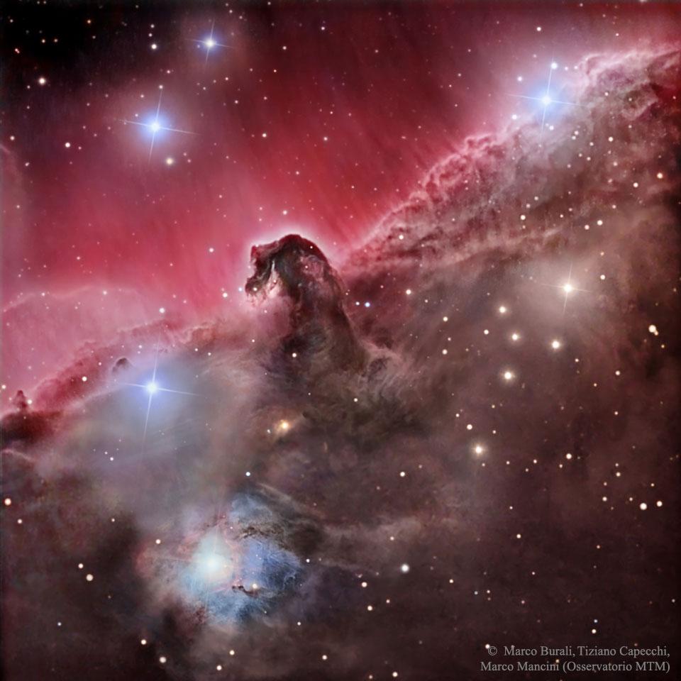 El Sofista: La espléndida nebulosa de la Cabeza de Caballo