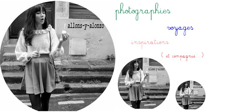 allons y alonzo, blog photos