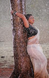 Hot bgrade actress in wet saree.