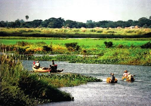 Irrawaddy delta
