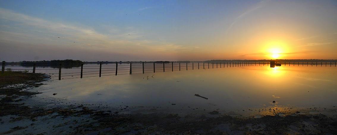 Amanece Diciembre desde las Marismas del Guadalquivir