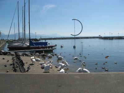 Portul Ouchy, Lausanne, Elvetia