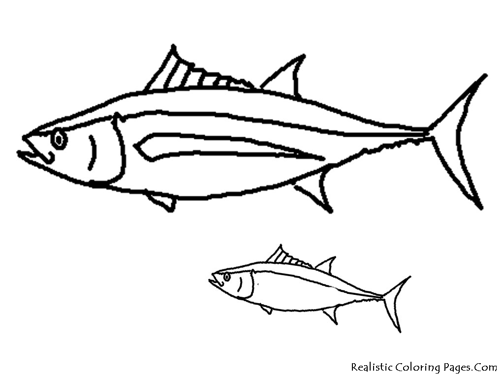 coloring pages and tropical fish - photo#16