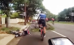 Cyclist hit by falling branch