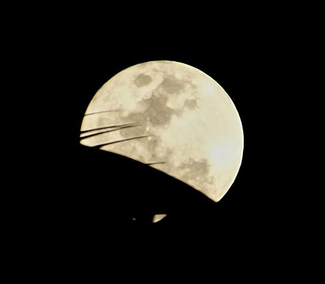 full moon, December 25